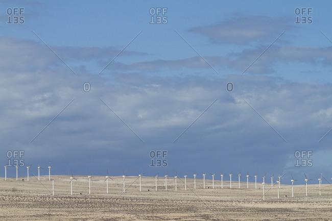 Wind mills in a desert fields. Fuerteventura, Canary Islands