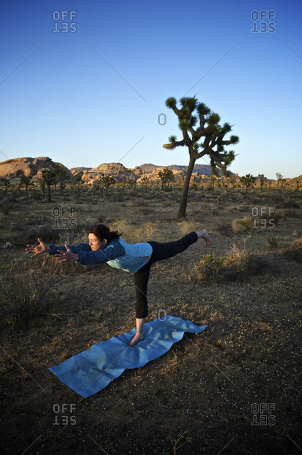 A young woman practices yoga in front of a joshua tree in the desert.