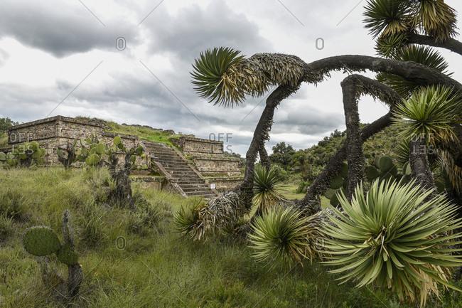 View of pyramid at Xihuingo archeological site, Tepeapulco, Hidalgo, Mexico