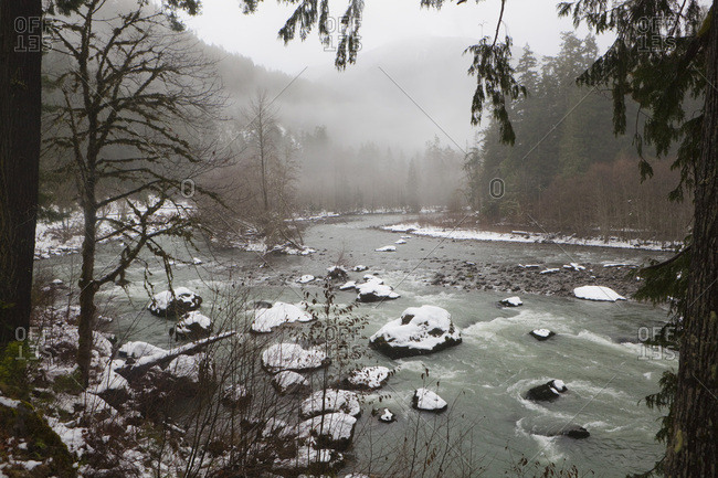 The Elwha River framed by trees on a misty winter morning in Olympic National Park, Washington.