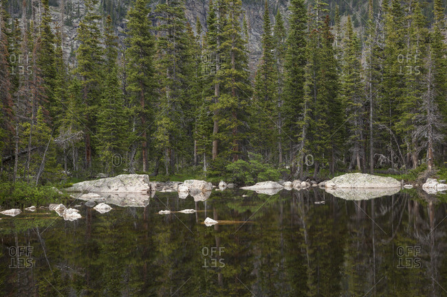 Boulders and conifers on the shore of Chipmunk Lake, Rocky Mountain National Park, Colorado.