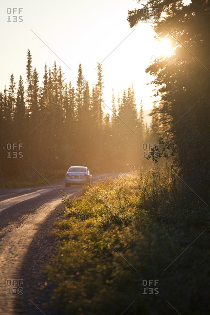 A car drives the McCarthy Road, swarms of insects backlit by the setting sun, in Wrangell-St. Elias National Park, Alaska.