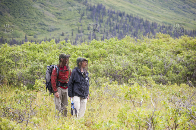 A couple, wearing mosquito head nets, hike in Donoho Basin in Wrangell-St. Elias National Park, Alaska.