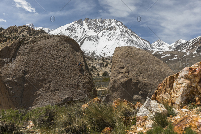 Rock climber climbing rock formation, Bishop, California, USA