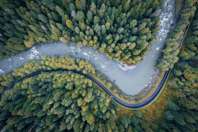Beautiful curvy river and the road in a beautiful pine trees forest