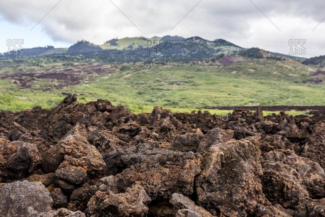 Field of lava rocks, Maui, Hawaii Islands, USA