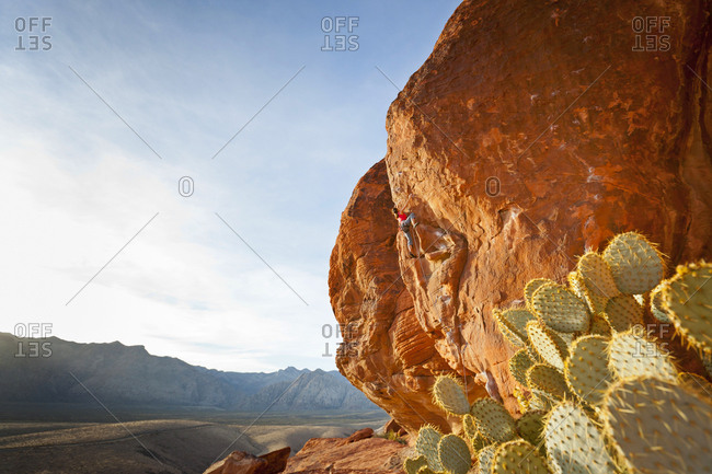 A rock climber in the Calico Hills, Red Rock Canyon National Conservation Area, Nevada, USA.