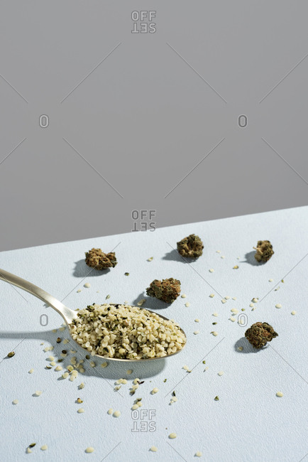Closeup of a spoon full of hulled hemp seeds and some hemp buds on a pale blue surface