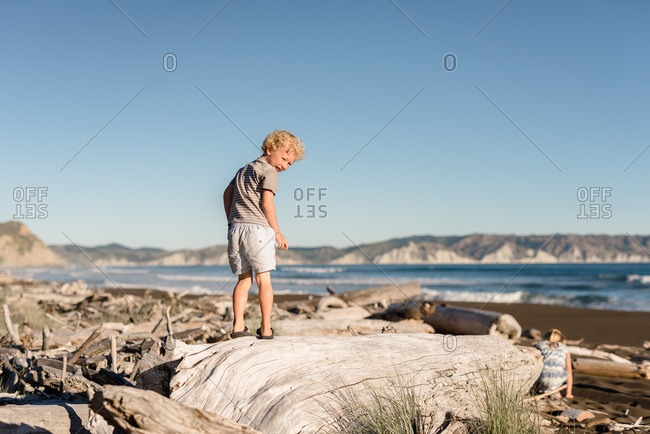 Young boy standing on a large piece of driftwood looking towards the camera
