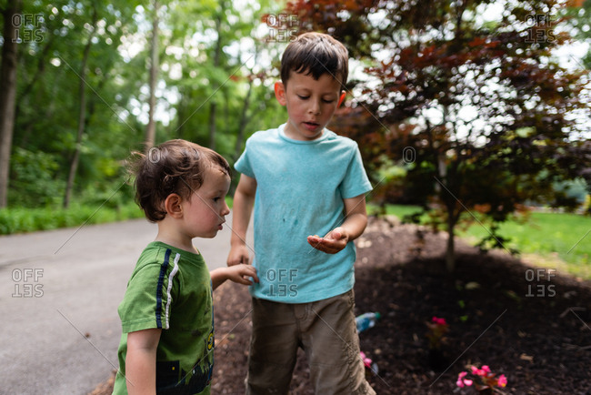 Little boy showing brother a bug he found outside