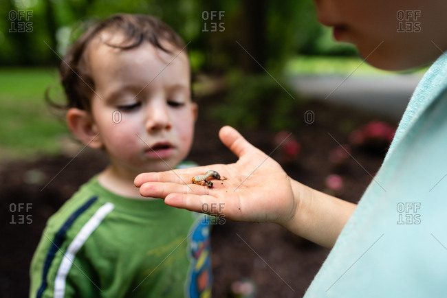 Boy showing baby brother a bug he found outside