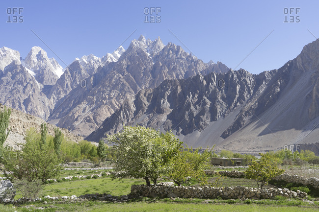 Greenery of the village of Passu, Northern Pakistan