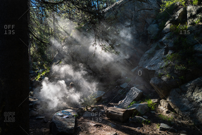 Man surrounded by smoke in the forest