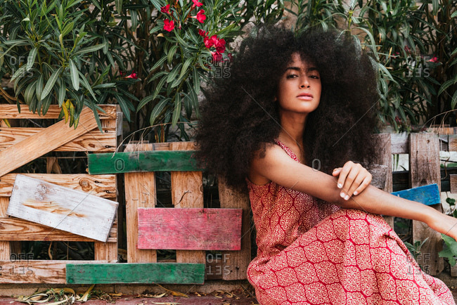 Pretty woman with a natural afro hairstyle looking at the camera, dark skinned and sitting in a garden
