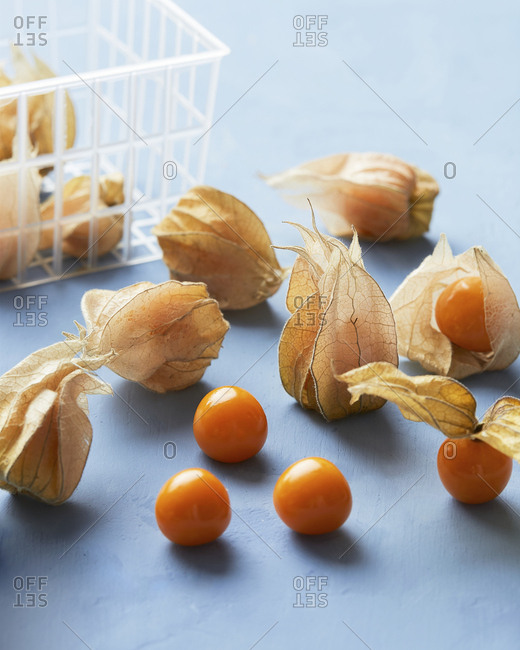 Several Cape Gooseberries with a basket in blue background