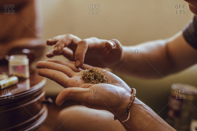 Close-up of a hands preparing a joint of marijuana