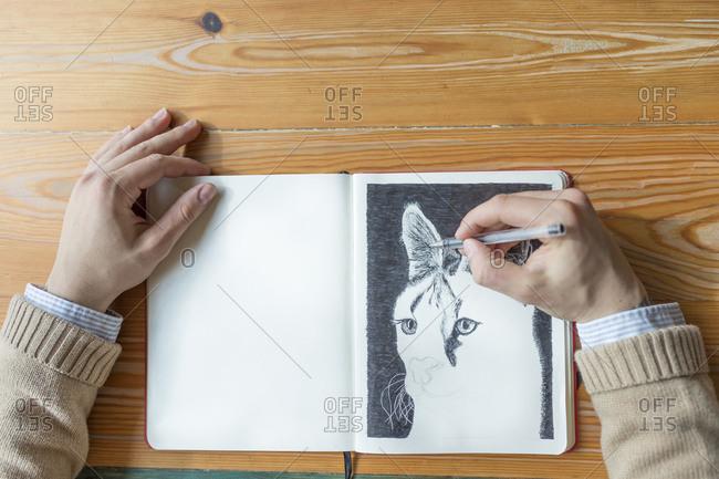 Man drawing a cat