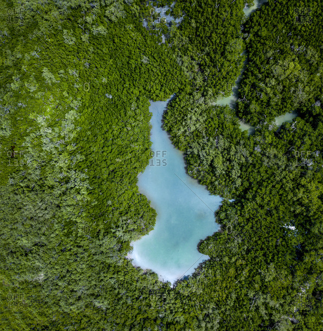 Aerial view of a turquoise lake and rain forest- Holbox- Yucatan- Mexico
