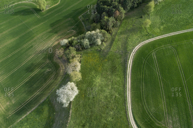Aerial view of dirt road through landscape with meadow- trees- agricultural fields and forest- springtime- Franconia- Bavaria- Germany