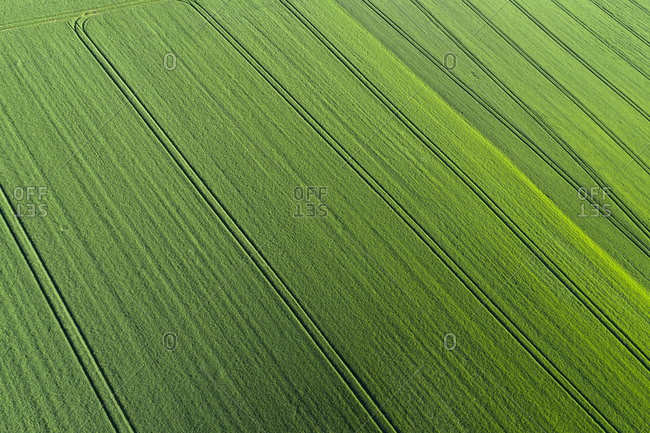 Aerial View of abstract green agricultural field- springtime- Franconia- Bavaria- Germany