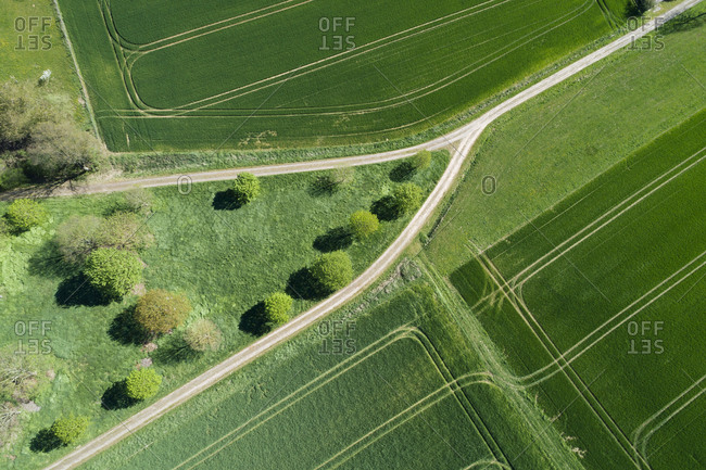 Abstract aerial view of dirt road with trees and green agricultural fields- springtime- Franconia- Bavaria- Germany