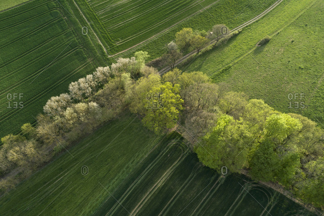 Abstract aerial view of rural landscape with agricultural fields- meadows and trees- springtime- Franconia- Bavaria- Germany