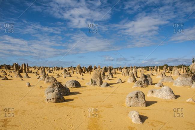 Pinnacle limestone formations at sunset- Nambung National Park- Western Australia