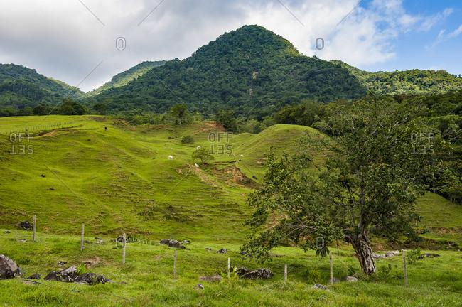 Mountain scenery near the German town Pomerode- Brazil