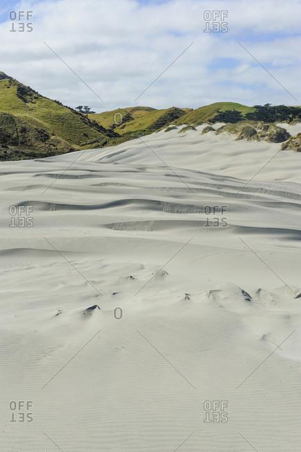 White sand dunes on Wharariki Beach- South Island- New Zealand