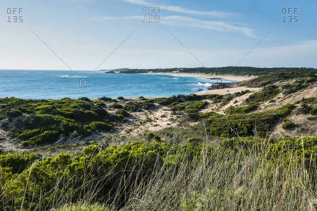 Beach near Cape Jaffa- South Australia- Australia