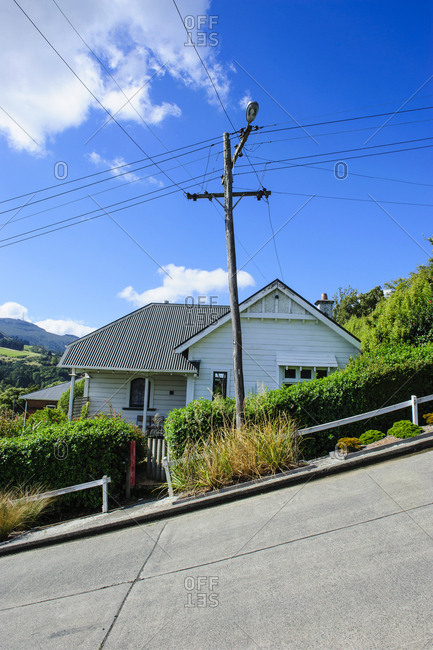 Baldwin Street- the world's steepest residential street- Dunedin- South Island- New Zealand