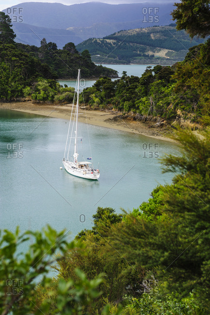 Sailing boat in the Marlborough Sounds- South Island- New Zealand