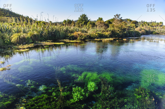 Te Waikoropupu Springs- Takaka- Golden Bay- South Island- New Zealand