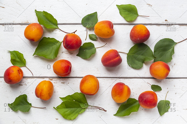 Apricots on white wood - Offset