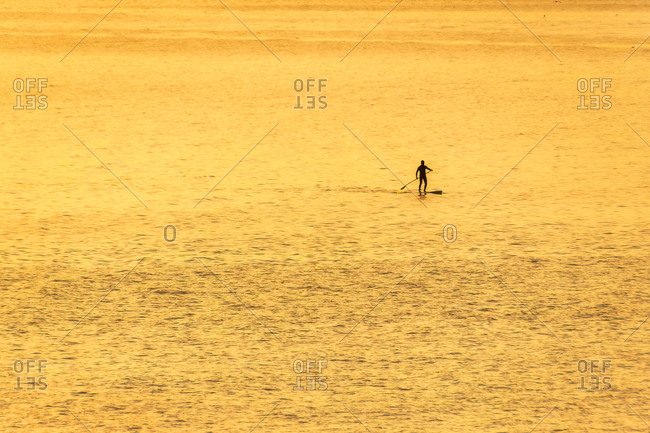 Man on stand up paddle board at sunset- North Berwick- East Lothian- Scotland