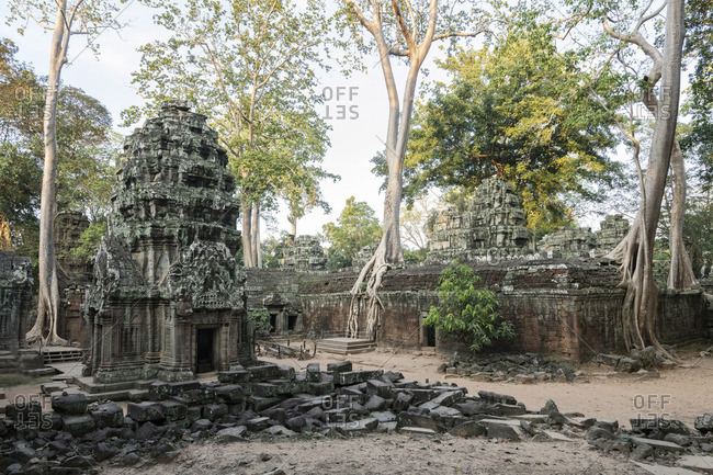 Asia, Cambodia, Siem Reap, UNESCO, World Heritage, Angkor, Ta Prohm