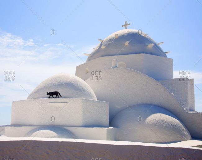 Agia Irini church with black cat walking, Ios island, Cyclades, Greece