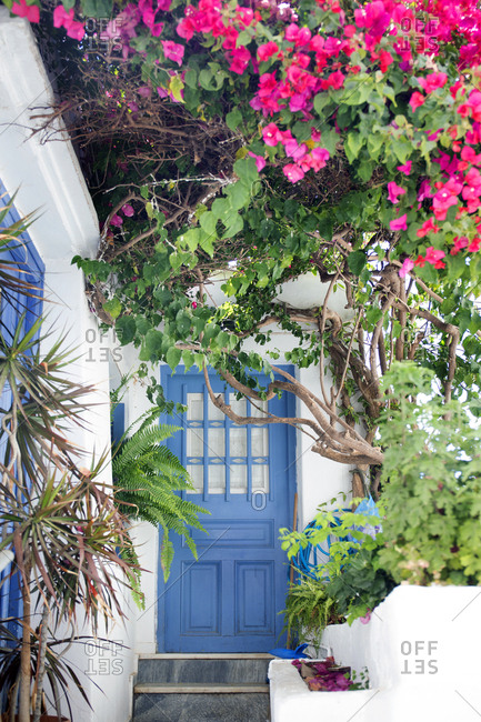 House blue entrance door with flowers, Naxos Island, Cyclades, Greece