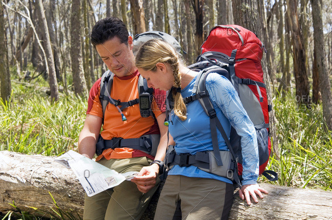 Hikers read topographical map.
