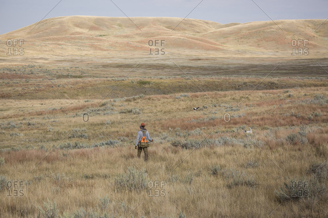 Upland hunter man with his dog and sage grouse shot while hunting near Malta, Montana.