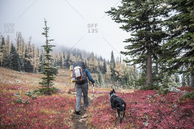 Woman with dog hiking Wilderness in autumn, Washington State, USA
