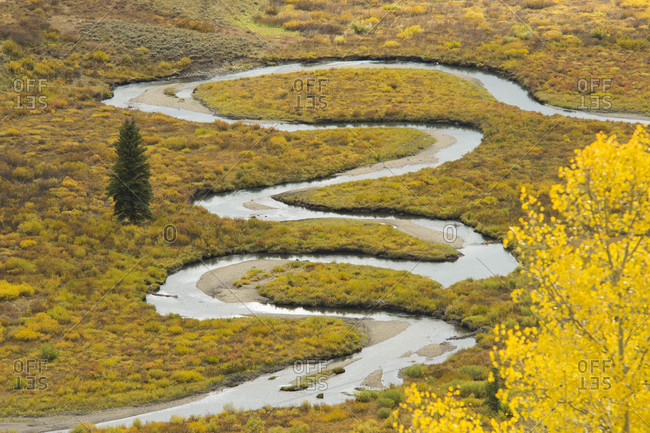 Scenery of meandering river through yellow meadow in autumn, Crested Butte, Colorado, USA