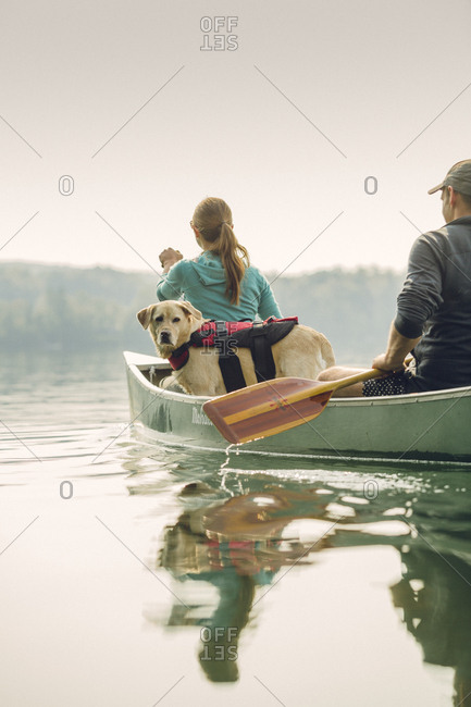 Young couple canoeing with their dog on a lake in summer.