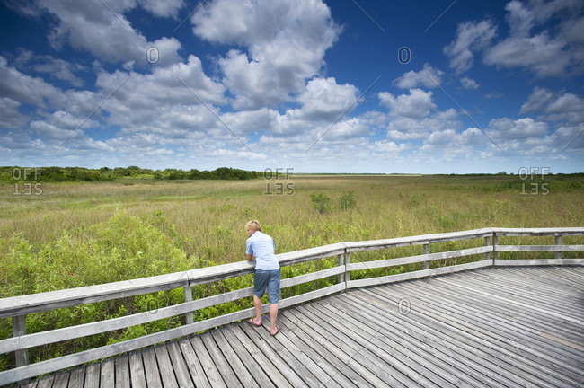 A man pauses during a hike to lean against a wooden railing in Everglades National Park, Florida.