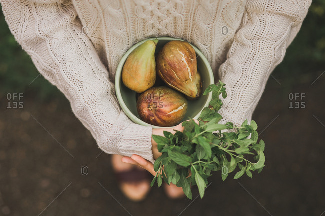 Overhead view of woman holding bowl full of fresh figs  and handful of peppermint