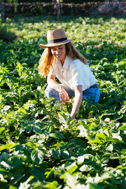 Woman working with a hat in an ecological garden.