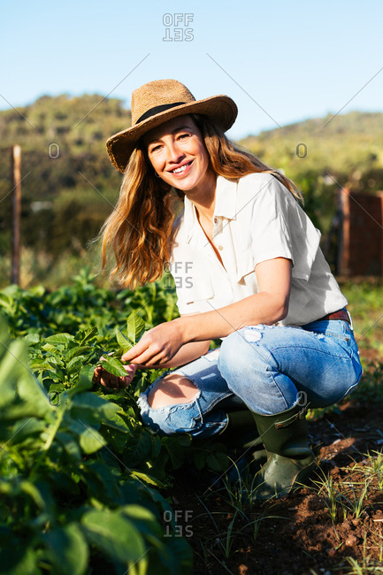 Woman gardening with a hat in an ecological garden.
