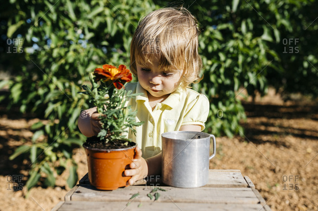 Girl repotting a flower