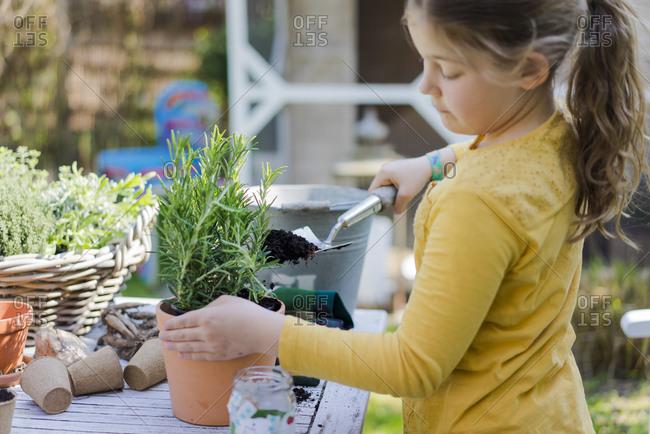 Girl gardening on garden table