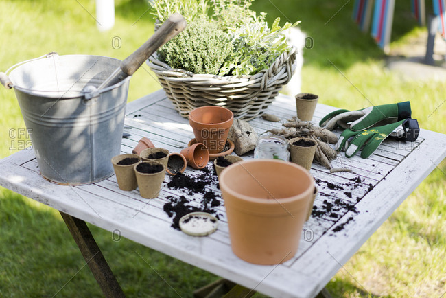 Gardening accessories on table